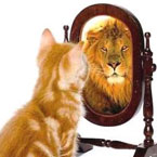 cat looking in mirror, sees a lion