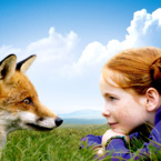 young girl and fox, staring at each other